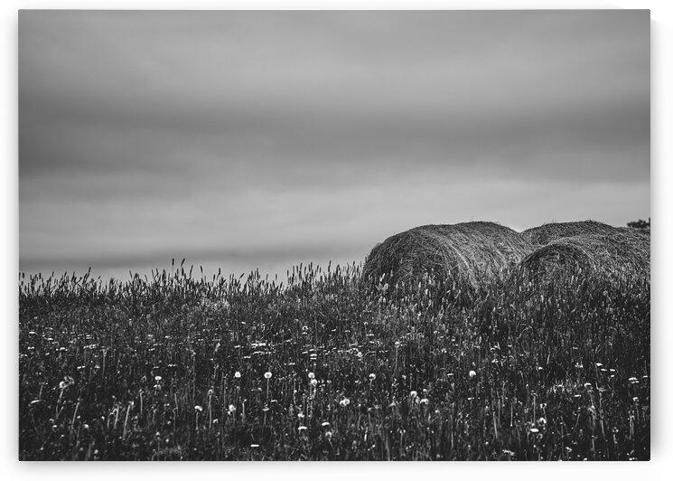 Haystacks by Bob Orsillo