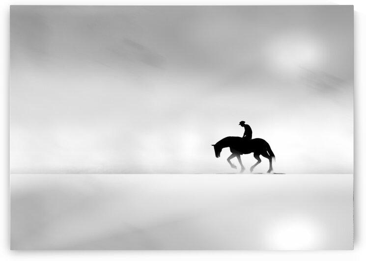 Cowboy by Bob Orsillo