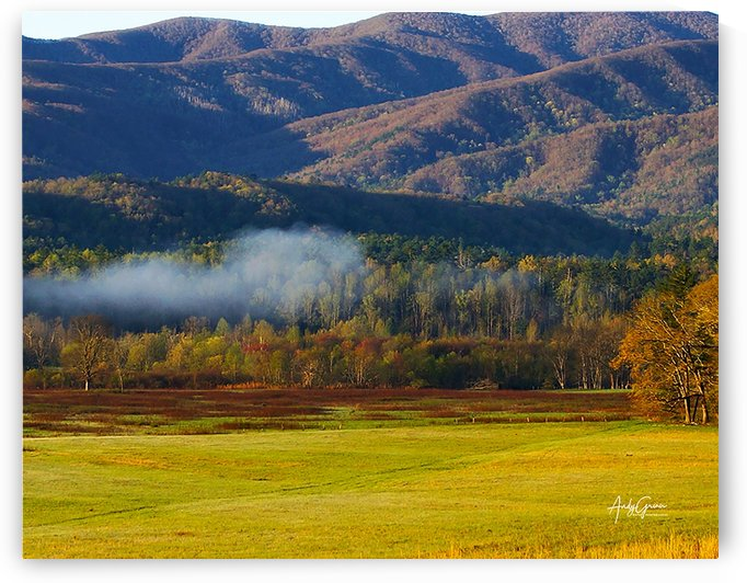 Cades Cove Tn. by Andy Griner