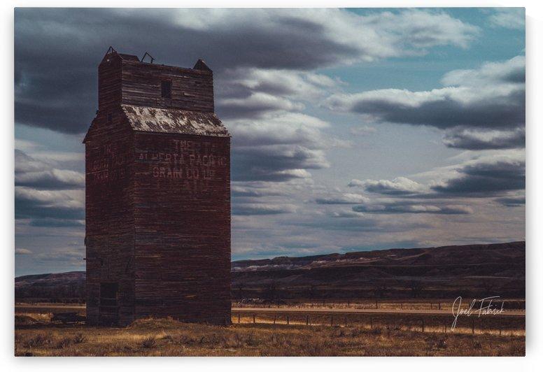 Dorothy Elevator Vintage Look   Hi Res   A3 by Joel Fabrick