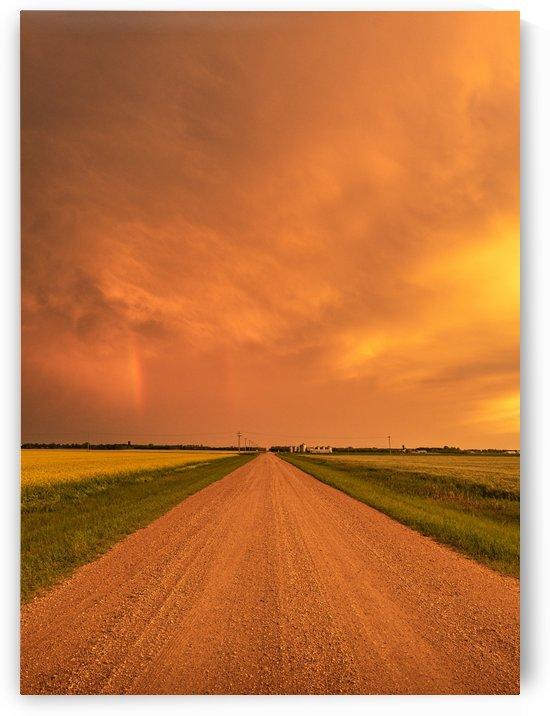 DSC_4799 by Brent Mckean