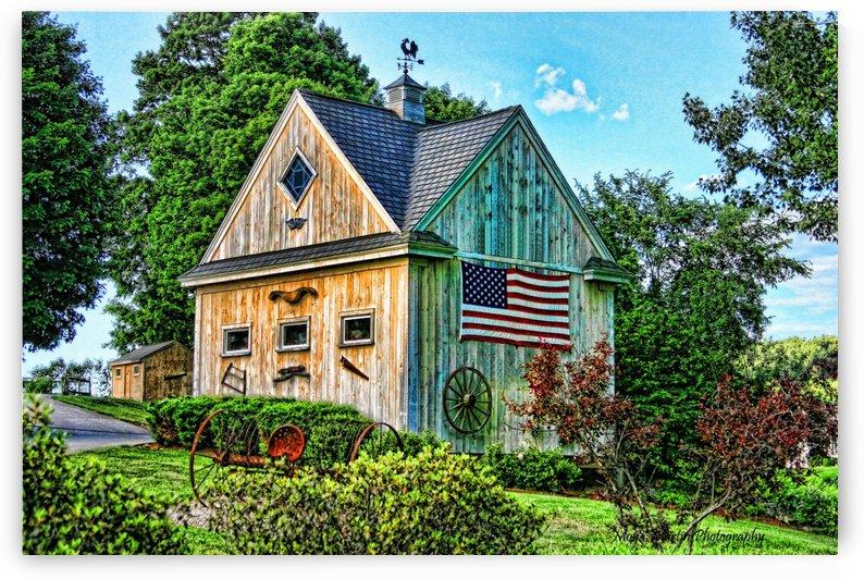 American Barn by Mona Martin