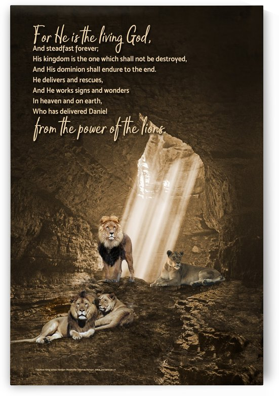 From the Power of the Lions by Life Stills by Barry Wills