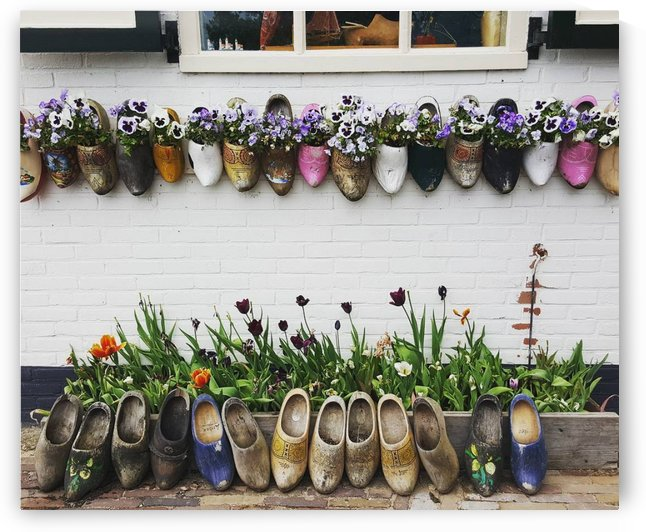 FLOWER SHOES by Gemma Stone