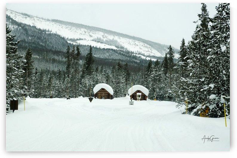 Snowed In by Andy Griner
