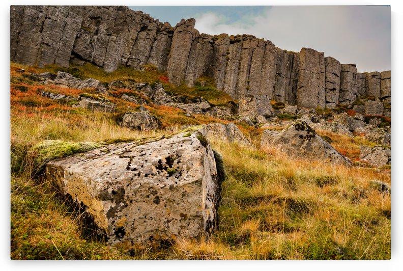 Basalt Columns against the Sunset -- Gerðuberg Cliffs Iceland by Jason Wen Bin TONG