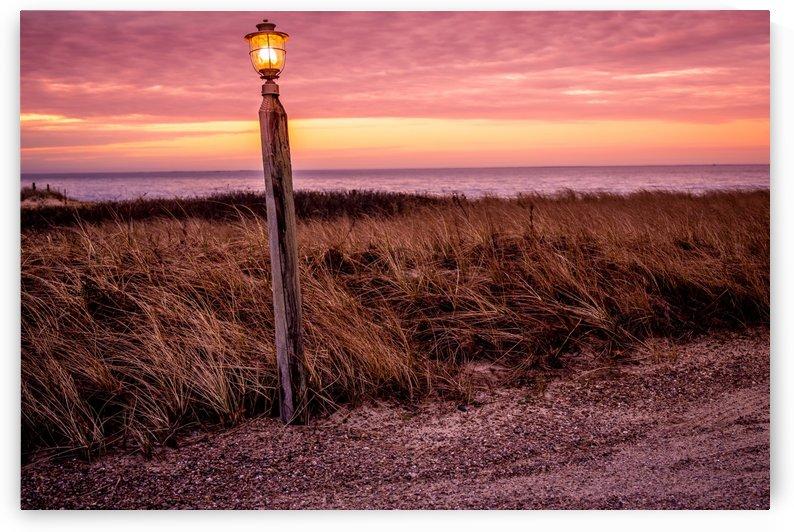 Beach Path at Dawn by Ed St Germain