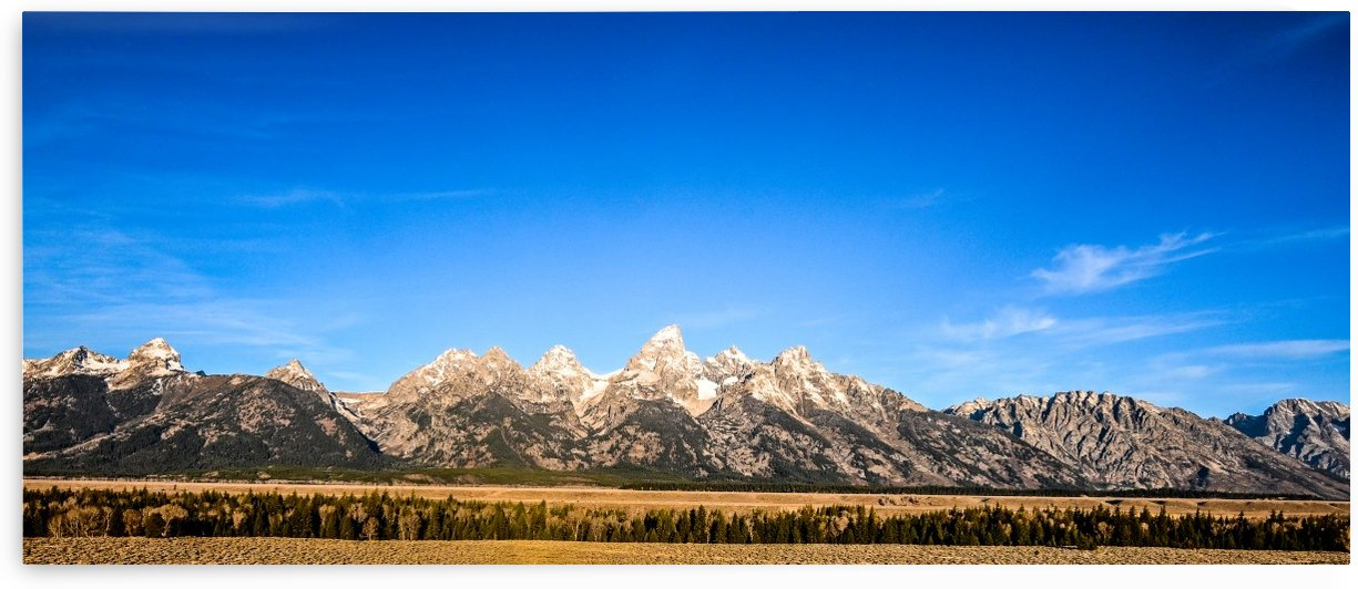 The Grand Tetons by Ed St Germain
