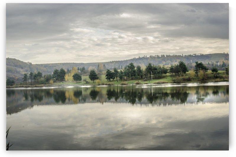 Autumn Lake Reflections by Ann Romanenko