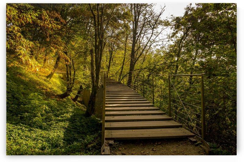 Bridge to Autumn by Ann Romanenko