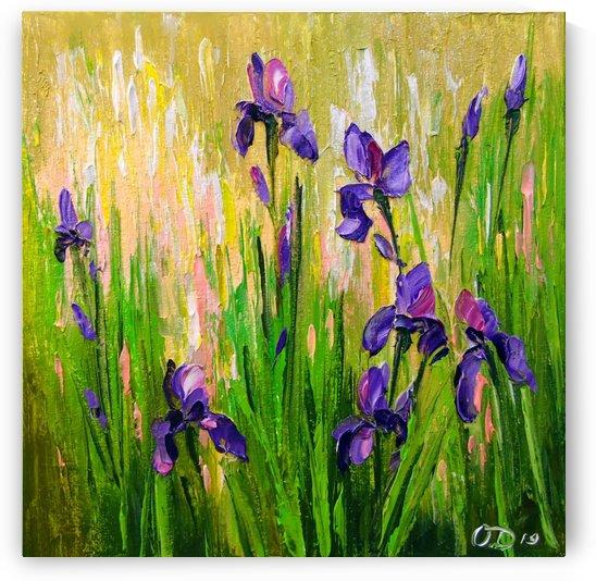 Irises by Olha Darchuk