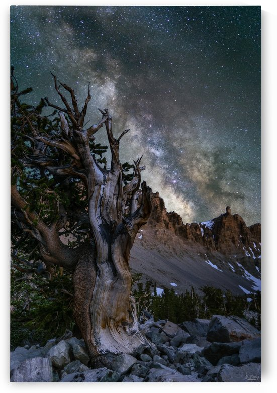 Bristlecone Blue Hour Blend Watermark by J  Browning Photography