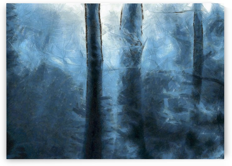 Blue Forest by Bruce Rolff
