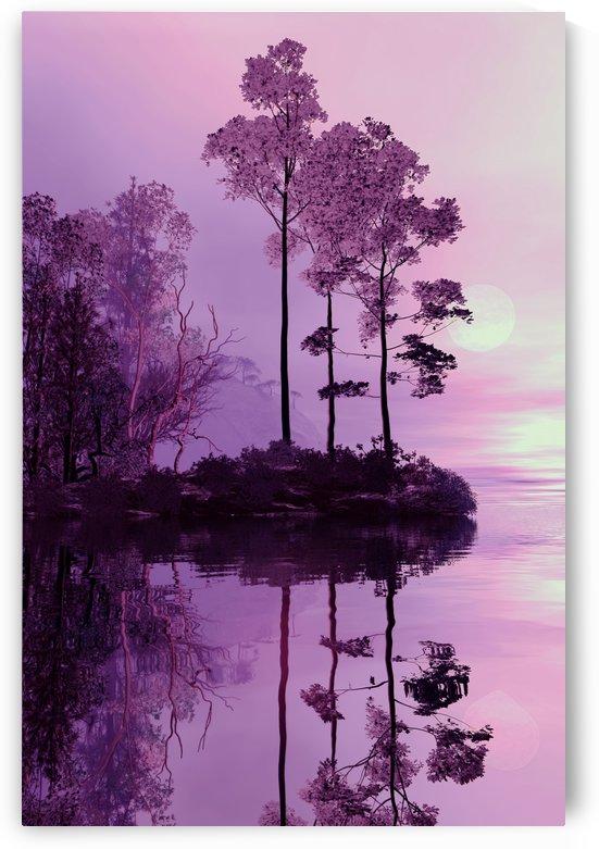 Purple Forest by Angel Estevez