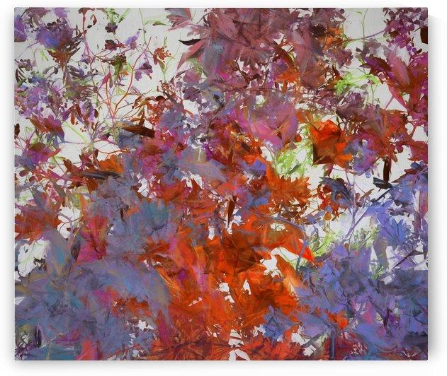Autumnal Colors by Angel Estevez