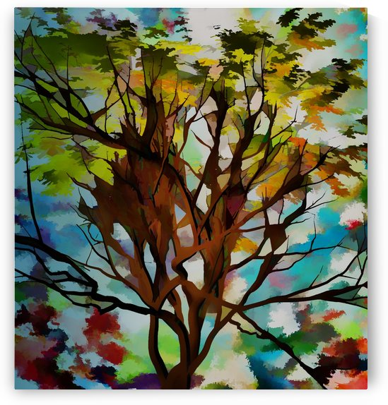 Autumnal Tree by Angel Estevez