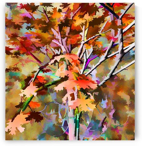 Autumnal Tree 3 by Angel Estevez
