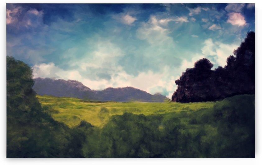 Dawn in the Field by Angel Estevez