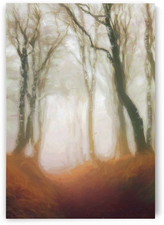 Grove by Angel Estevez