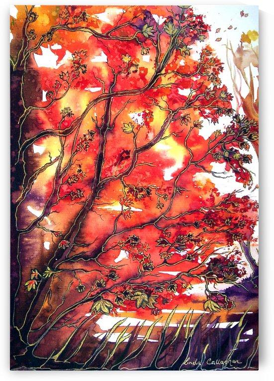 Autumn Song by Linda Callaghan