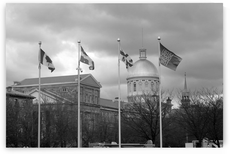 Flags of Montreal B&W by Gods Eye Candy