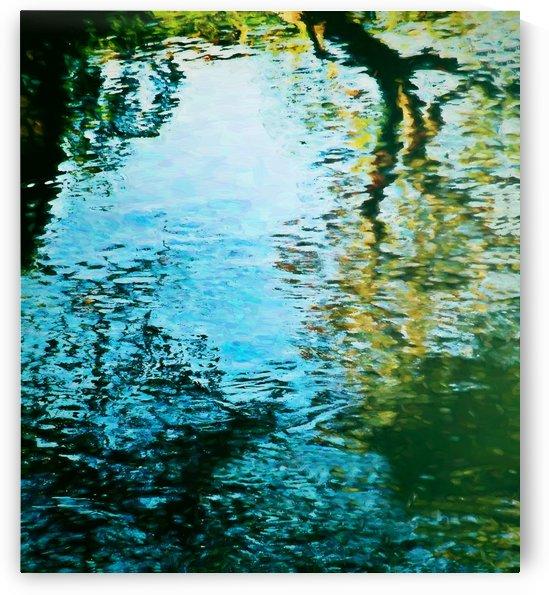 Nature reflections by Angel Estevez