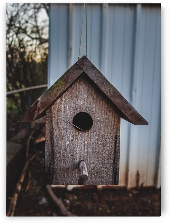 Birdhouse by CZB Photography