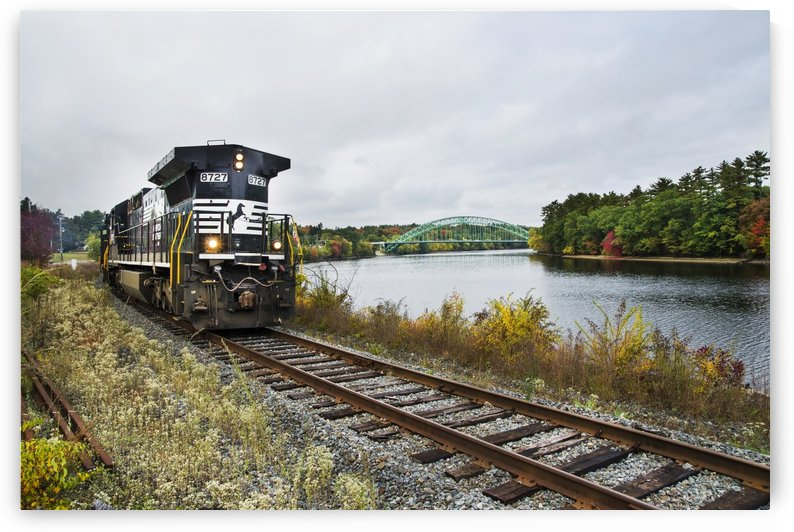 8727 Heading South   by Lee Fortier