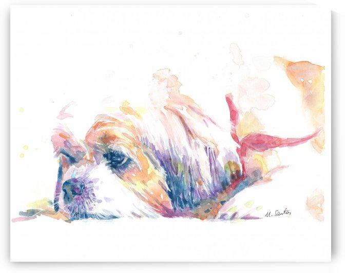 Shih Tzu Dog Portrait - Portrait of Lucy by Marie Santos - M Santos Art