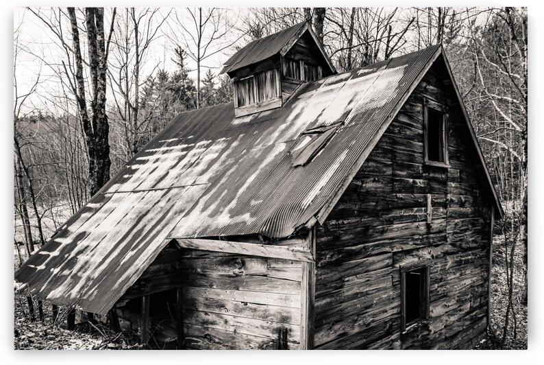 Abandoned Shack 6 by Dave Therrien