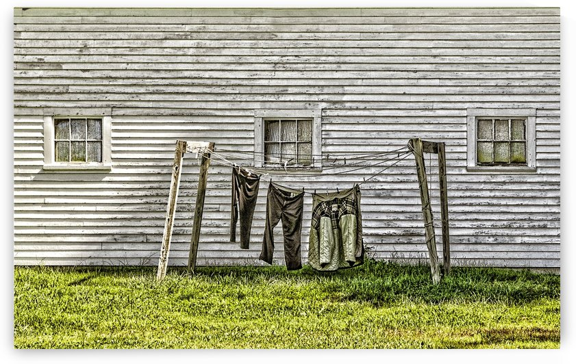 Clothesline    by Lee Fortier