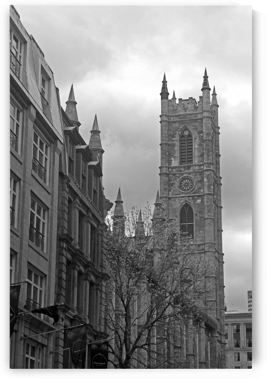 Notre-Dame Basilica B&W by Gods Eye Candy