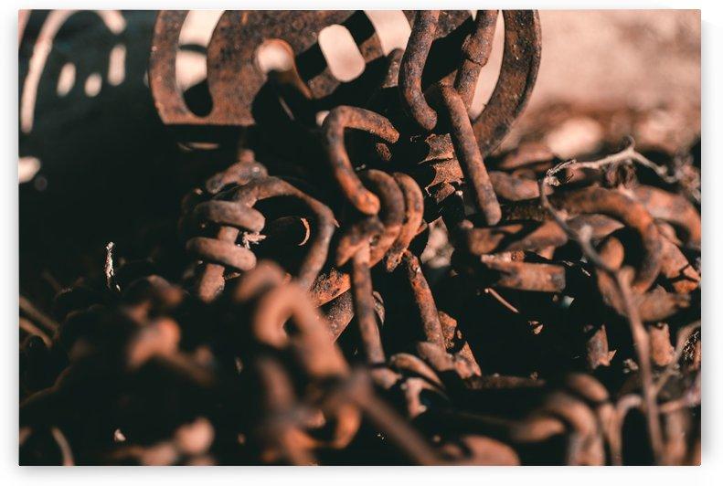 Rusting Chains by Luigi Veggetti