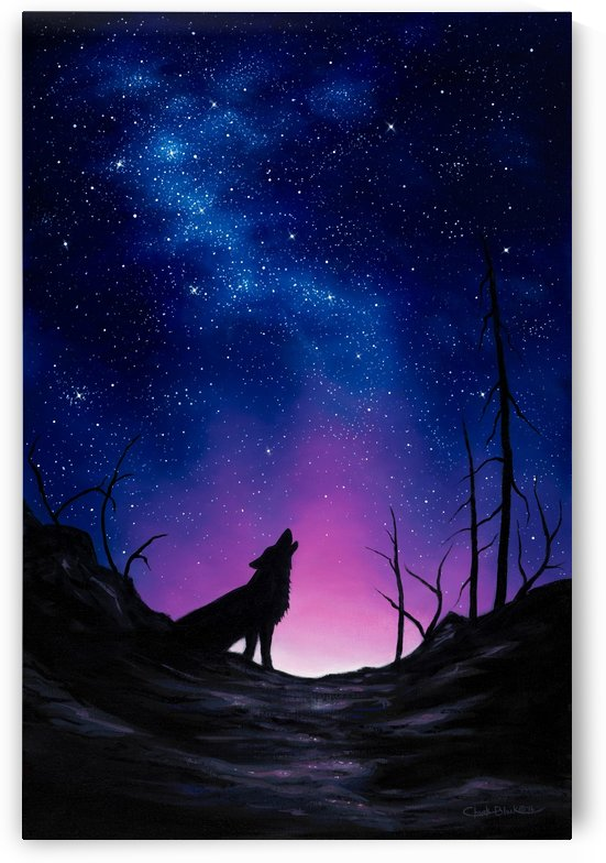 starry night canvas.3 by CRB