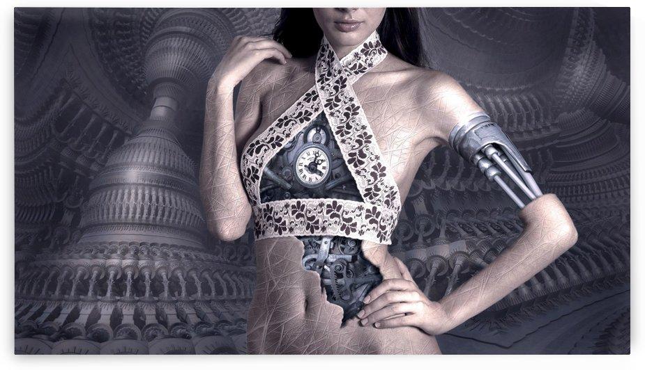 fantasy  Robtic Women by Smithson