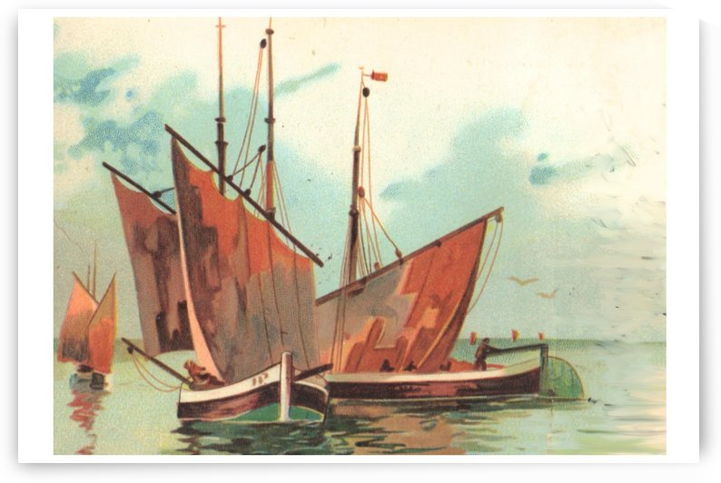 Greeting card Sailing boats by Alex Pell