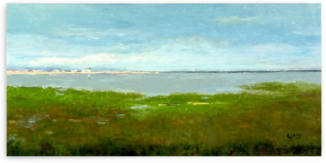 View to the Bay  by Kenneth Evans