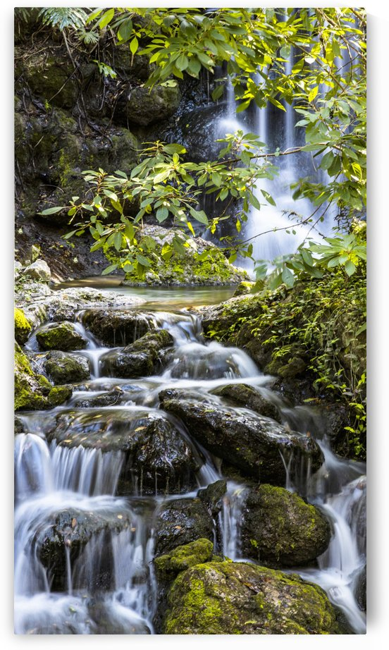 Waterfalls by Connie Maher