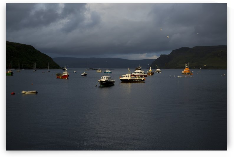 Boats of Light by Lindsey McCarty