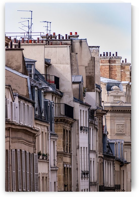 Paris Buildings All in a Row by Jean Farrell