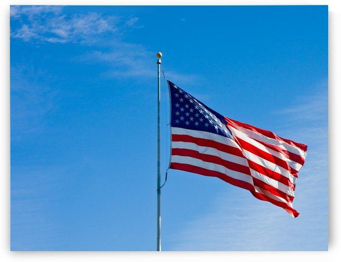 American Flag in LIght Wind by Darryl Brooks