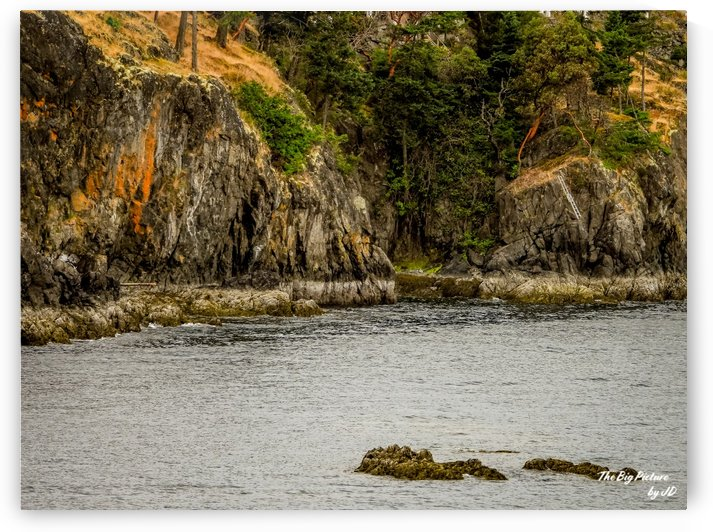 Neck Point Vancouver Island by The Big Picture by JD