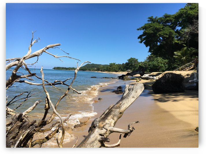 Rincon-Puerto-Rico-2019-7 by Dogtown Guy