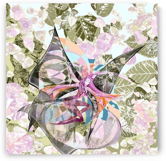 Papillon by Anik Lafreniere