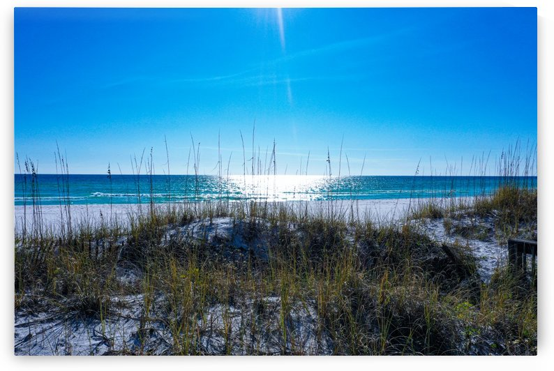 Crystal Beach Dunes by Destin30A Drone