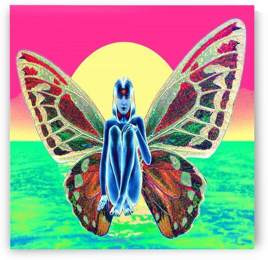 Fairy Metamorphosis by Matthew Lacey