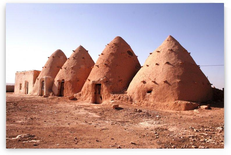 Sarouj hive houses by Locspics