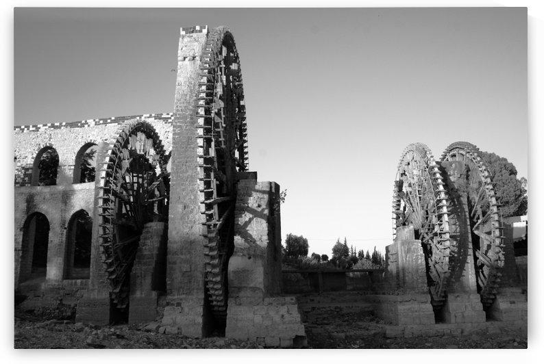 Noria in Hama by Locspics