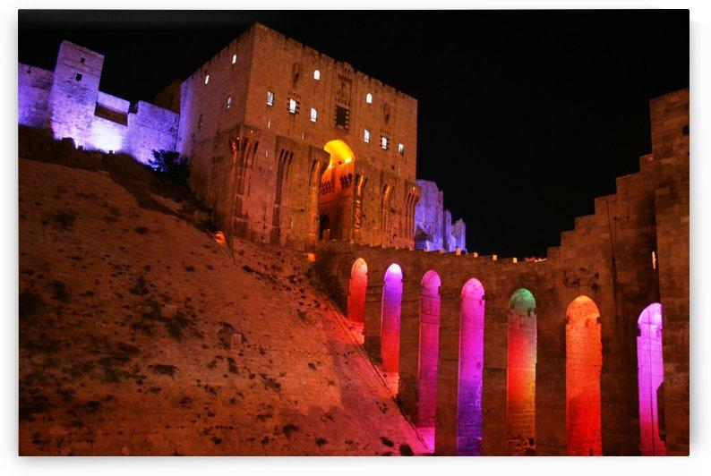 Aleppo citadel by Locspics