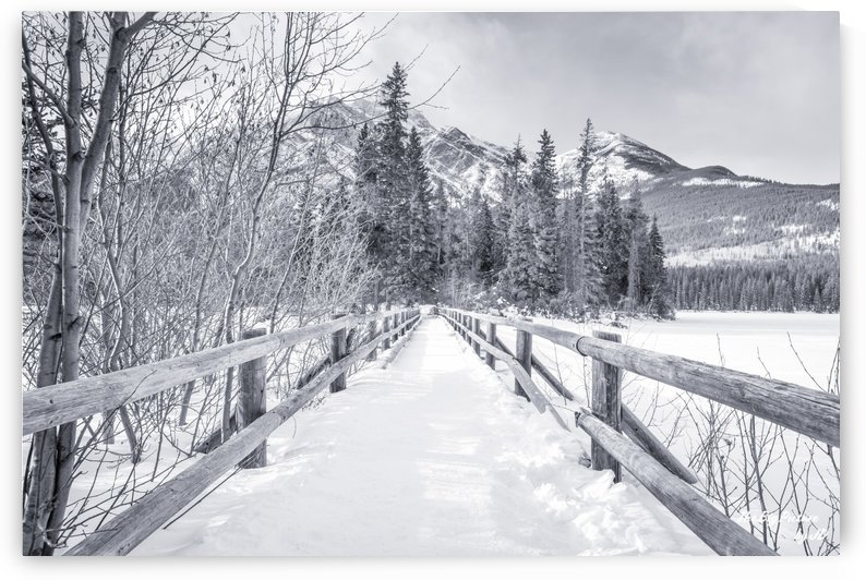 Pyramid Lake Bridge Black White by The Big Picture by JD